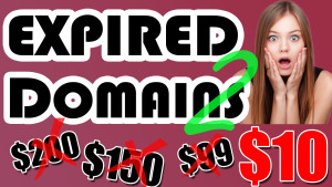 How To Buy CHEAP Expired Domains For Your Blog Network