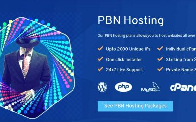 Easy Blog Networks (EBN) Alternative Cheap PBN Hosting